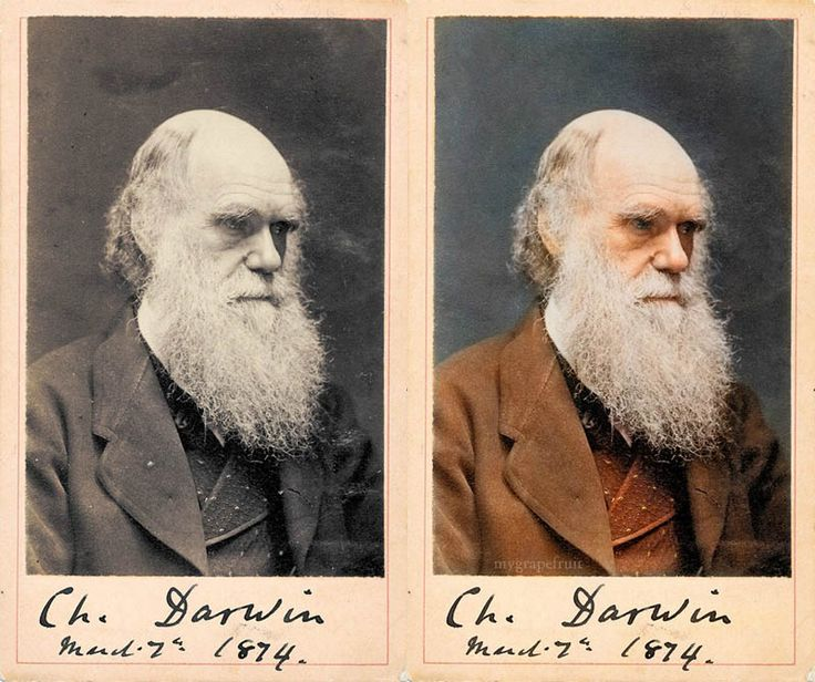 Charles darwin colorized