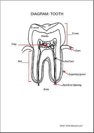 25 best Printable Dentist Themed Activity Sheets images on
