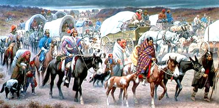 the forced migration of the cherokee indians essay The trail of tears, also referred to as the trail where they cried by the cherokee nation, was the forced migration imposed on the five civilized tribes of.