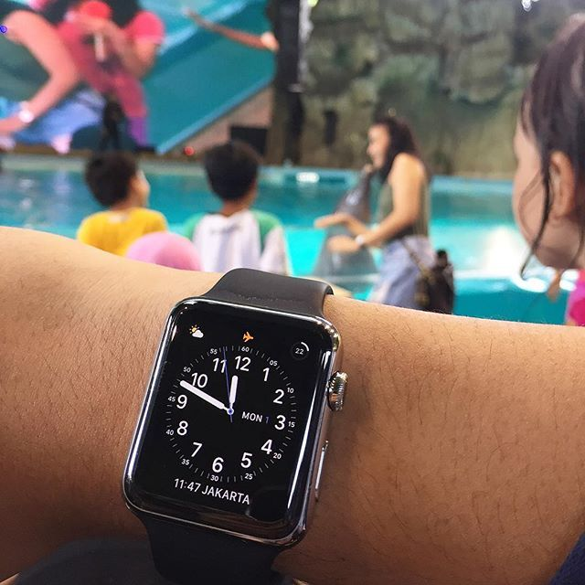 REPOST!!!  Kissing Dolphin - Apple Watch Stainless Steel 42mm | #stainlesssteel  #dolphin  #rolex  #luxurywatch  #wornandwound  #vintagewatch  #wristporn  #watchporn  #funworld  #womw  #ablogtowatch  #hodinkee  #amswatch  #wrist  #wristshot  #watch  #watchoftheday  #pscafe  #dinner  #akashi  #disney  #universalstudios  #farfaraway  #dufan  #ancol  #applewatch  #iwatch  #smartwatch  #mickeymouse  #classic  repost | credit: ID @ams.watch (Instagram)