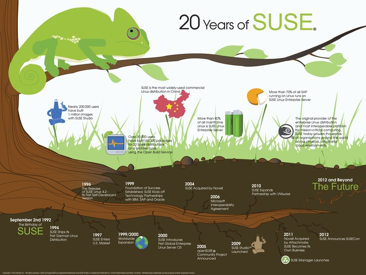 20 years of suse linuxSuse Infographic, Infographic Deepend, Create Infographic, Suse Linux, Infographic Online, Infographic Easy, 20 Years