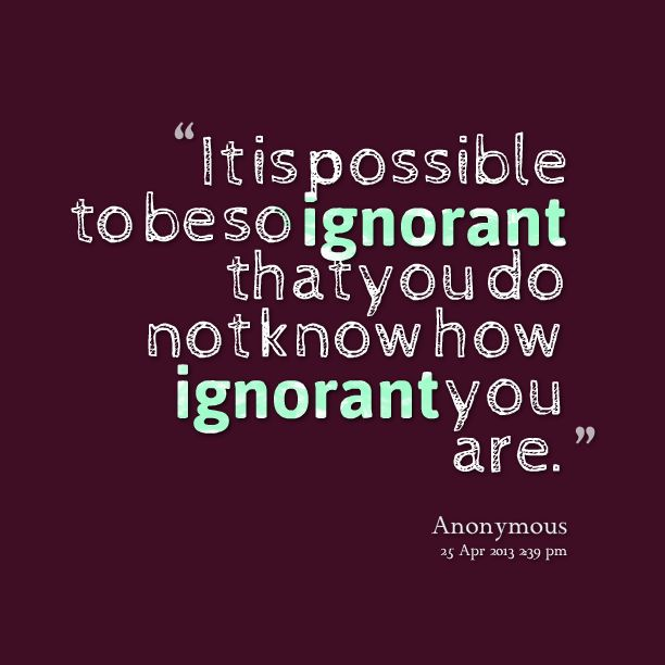 Quotes from Susan Sader: It is possible to be so ignorant that you do not know how ignorant you are. - Inspirably.com
