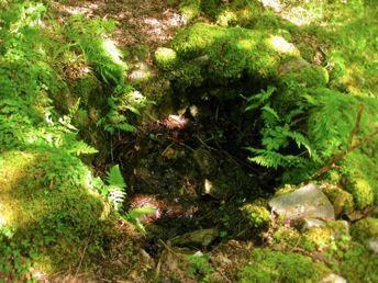 The Irish of Beaver Island - Catholic, Pagan, and Fairy Lore