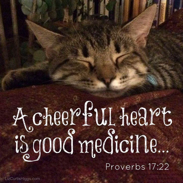 Book Of Proverbs Quotes: Best 25+ Knowing God Ideas On Pinterest