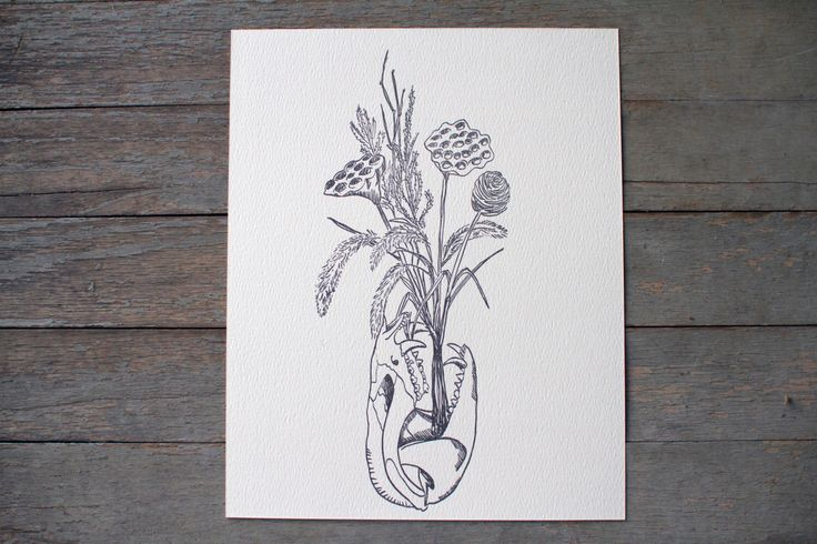 Possum Skull Dried Flowers letterpress art print - animal bones art - dried flowers - lotus pod print - weird nature - black and white by RatbeePress on Etsy https://www.etsy.com/listing/258210735/possum-skull-dried-flowers-letterpress