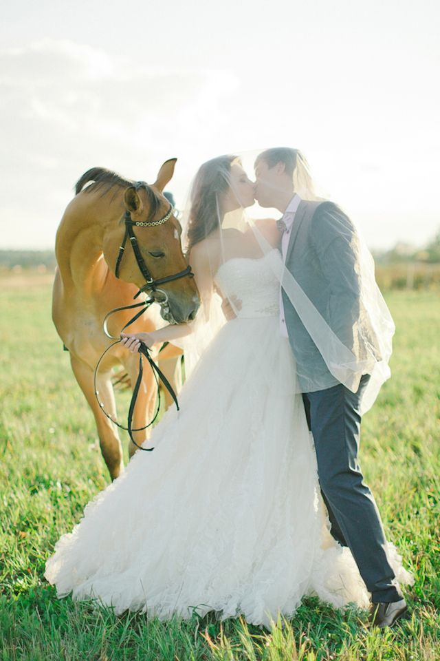 Wedding portraits with a horse | Warmphoto | see more on: http://burnettsboards.com/2014/11/equestrian-bridal-session/