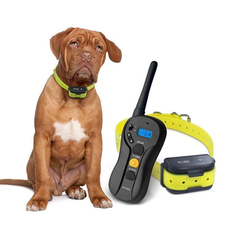 Shock Collar For Dog To Use Bathroom