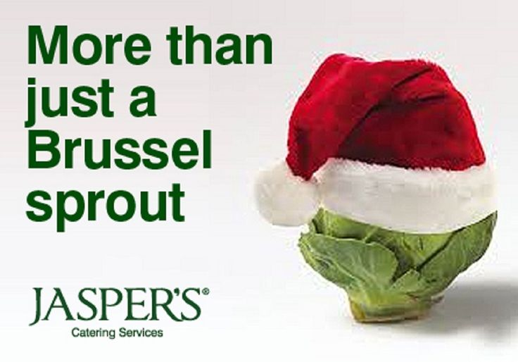 Are brussel sprouts good for you? http://www.whfoods.com/genpage.php?tname=foodspice&dbid=10