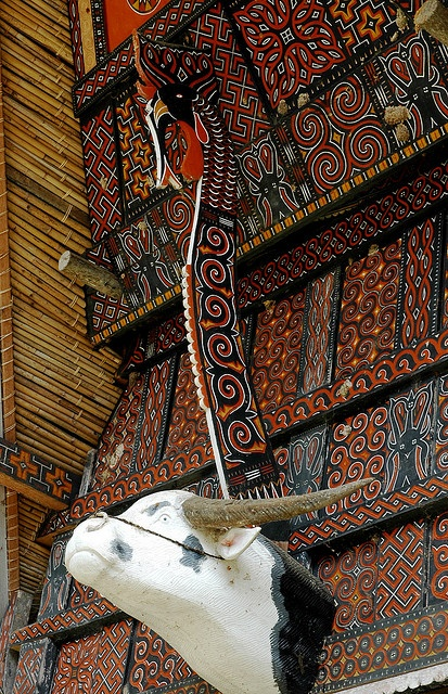 TONGKONAN Decoration by the Torajan people of Sulawesi Island, Indonesia
