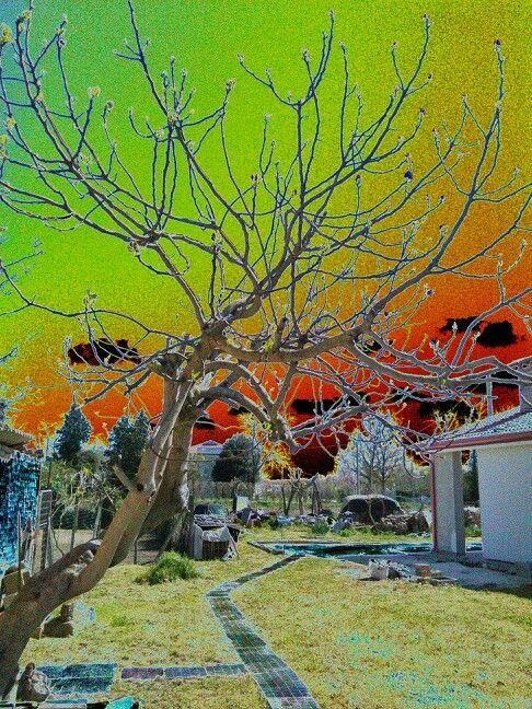 Nuclear sky 2