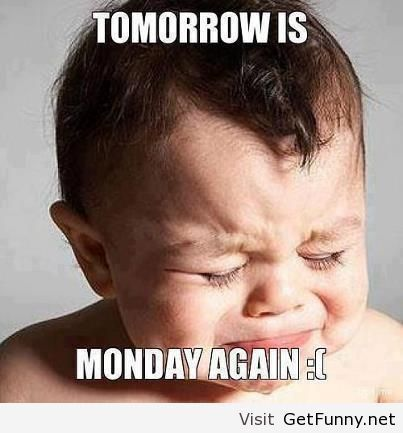 Quote about monday tomorrow - Funny Pictures, Funny...  Cute, Funny...  Pin...