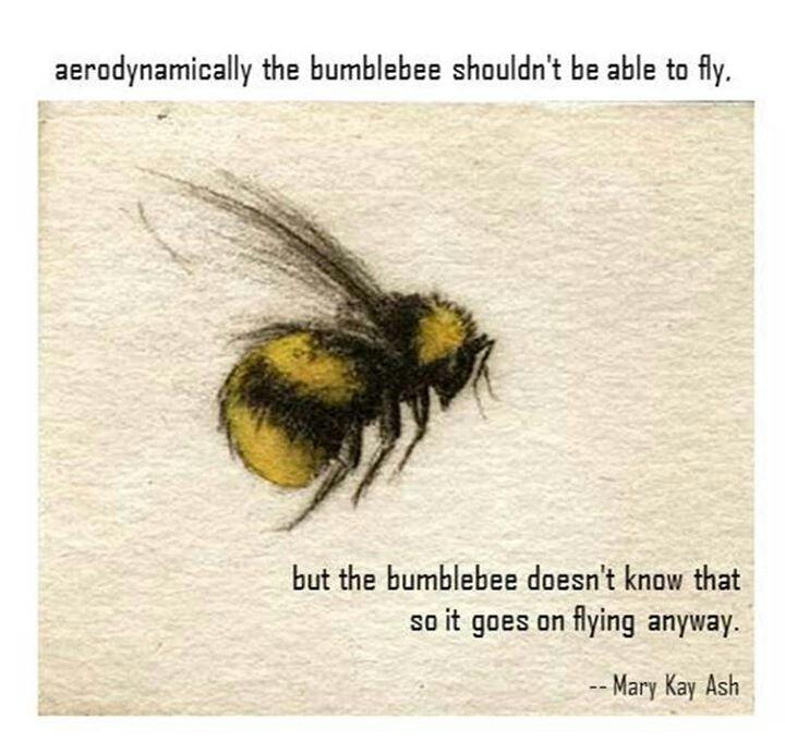 """""""Aerodinamicamente el cuerpo de una abeja no esta hecho para volar, lo bueno es que ella no lo sabe"""" www.albertalagrup.com"""