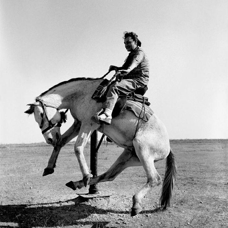 Vivian Maier — Untitled, June, 1953