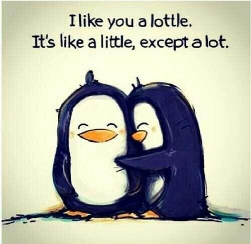 Awwww so cute