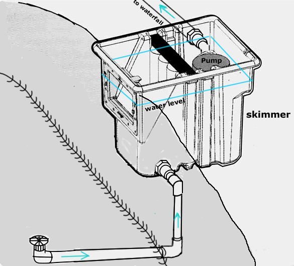 Bottom Drain And Skimmer Connection Diagram For Pond