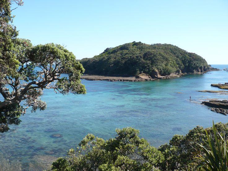 Saltwater Eco @ Goat Island