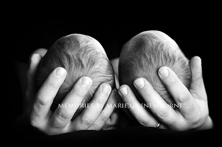 baby photography - memories by marie photography - twins - baby boys