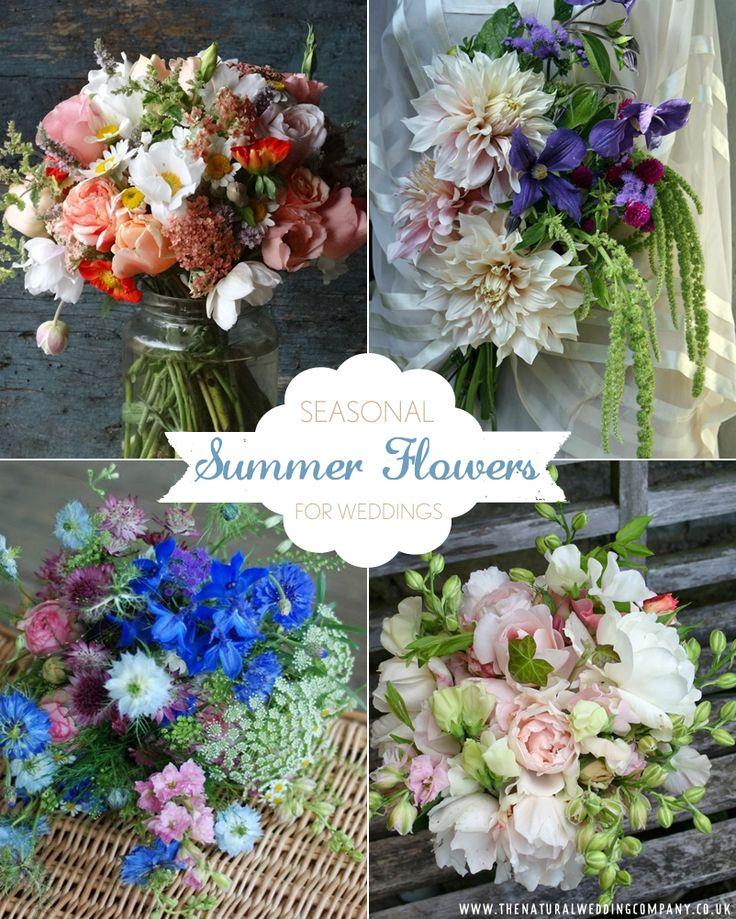 Wedding Flowers For Summer: 307 Best Seasonal Summer Flowers Images On Pinterest