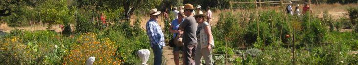 El control ecológico de las plagas   Red de Huertos y Consumo de la Sierra