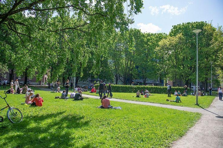 Lembitu-puisto on Lembitu-, Vambola-, Kauka-, A. Lauteri-katujen ympäröimä mukava piknik-puisto kesäisin. Se sijaitsee kävelymatkan päässä Solaris-kauppakeskuksesta kaakkoon. Alueella on lapsille leikkivälineitä ja siellä voi pelata myös shakkia. #lembitu #eckeröline #tallinna