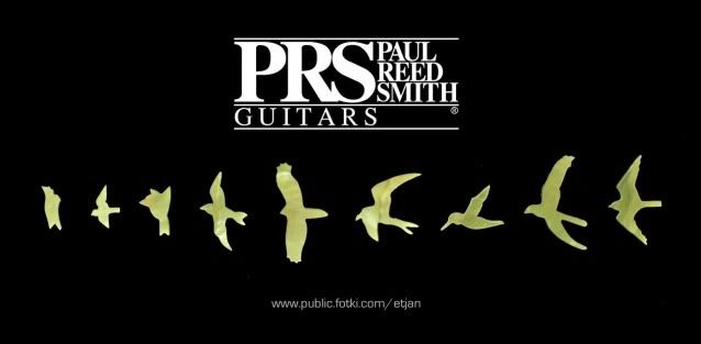 Paul Reed Smith bird inlays   Tattoo Ideas & Inspiration ...