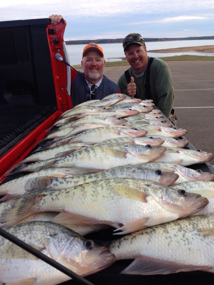 1464 best fishing images on pinterest crappie fishing for Crappie fishing in mississippi
