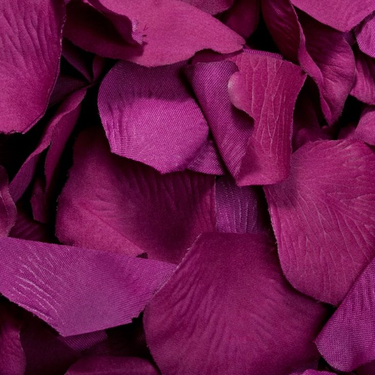 1000 Silk Rose Petals- Sangria [Buy Sangria Silk Rose Petals] : Wholesale Wedding Supplies, Discount Wedding Favors, Party Favors, and Bulk Event Supplies