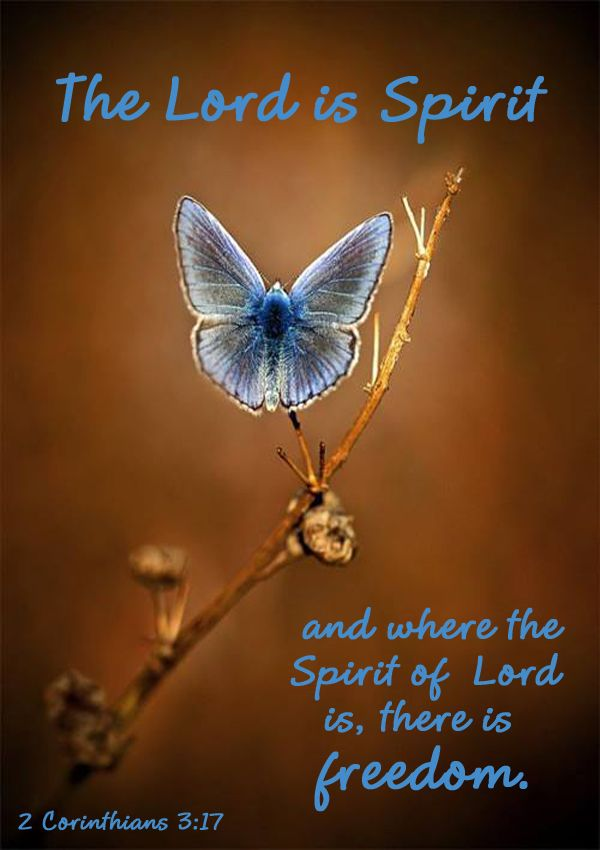 Image result for Wherever the spirit of the Lord is there is freedom