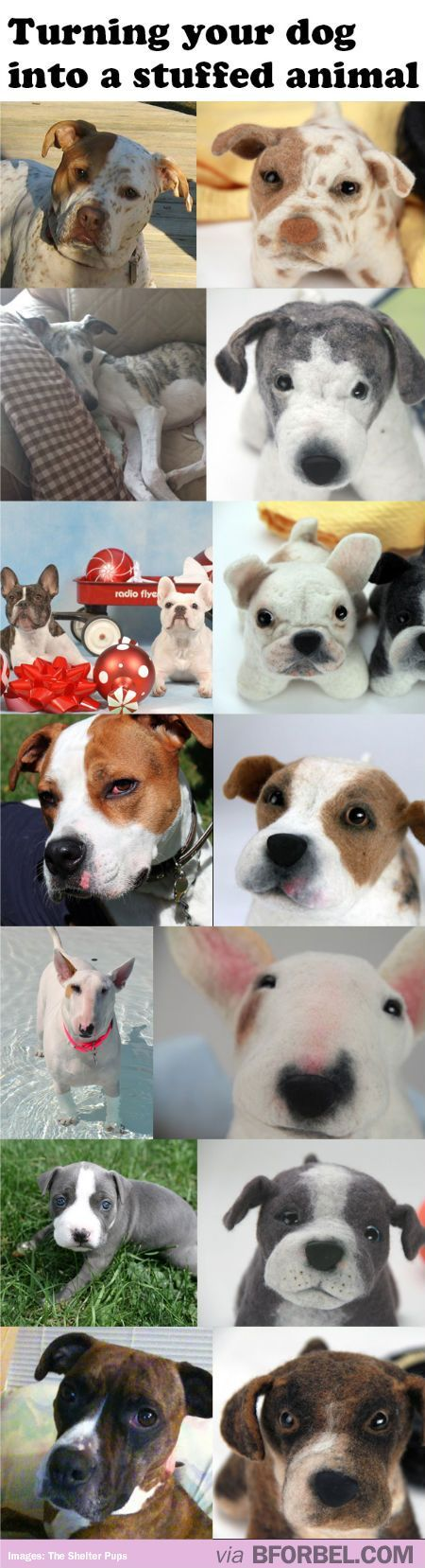 This website turns your dog into a stuffed animal! Proceeds support Shelters and Rescues!