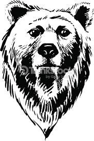 Image result for bear head drawing