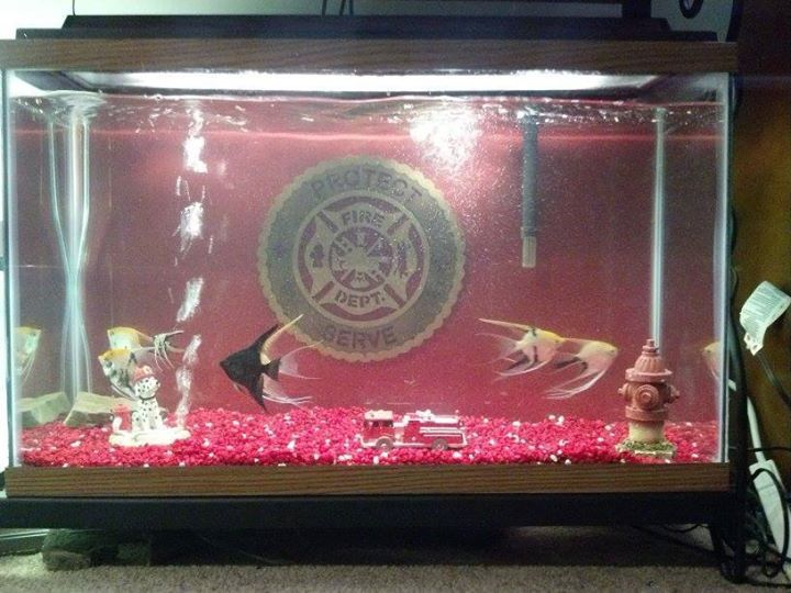 78 images about firefighter man cave on pinterest for Fish tank fireplace