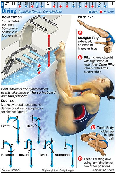 Diving. This would have been helpful to have during the Olympics...while I judged divers from my judging seat (aka the couch).