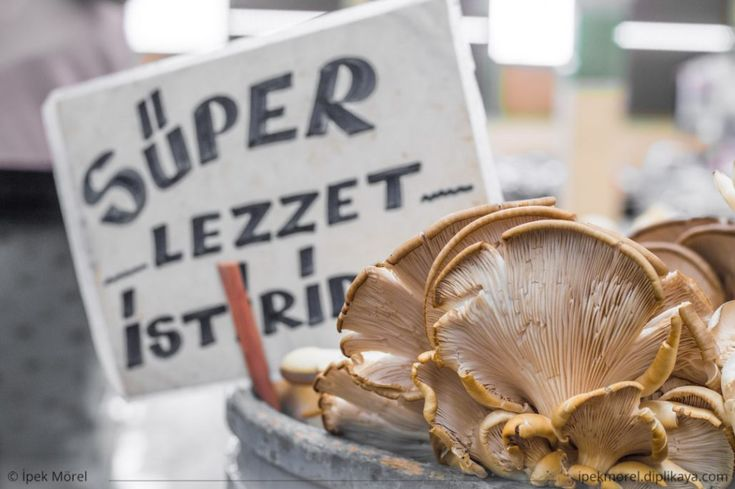 """Fresh oyster mushrooms with blurry """"Super Taste Oyster"""" tag behind on the counter in a traditional greengrocery bazaar in Turkey."""