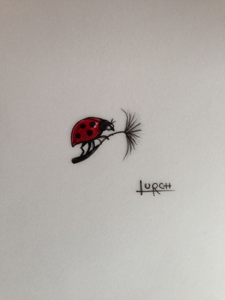 Tiny small little tattoo ladybird dandelion clock flying