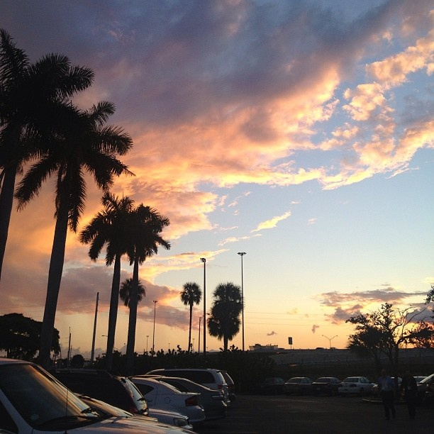 I love Miami and all its spectacular sunsets.
