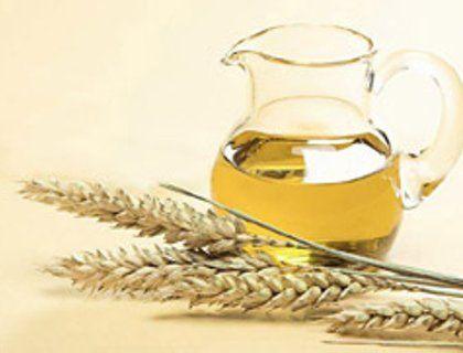 Масло зародышей пшеницы. Полезные свойства. Применение   Блог Ирины Зайцевой