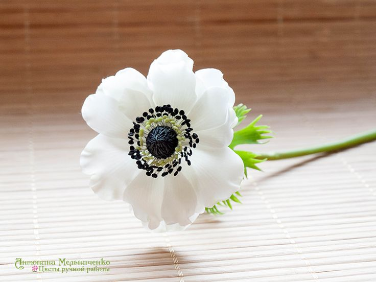 Anemone - Polymer Clay Flowers by SaisonRomantique