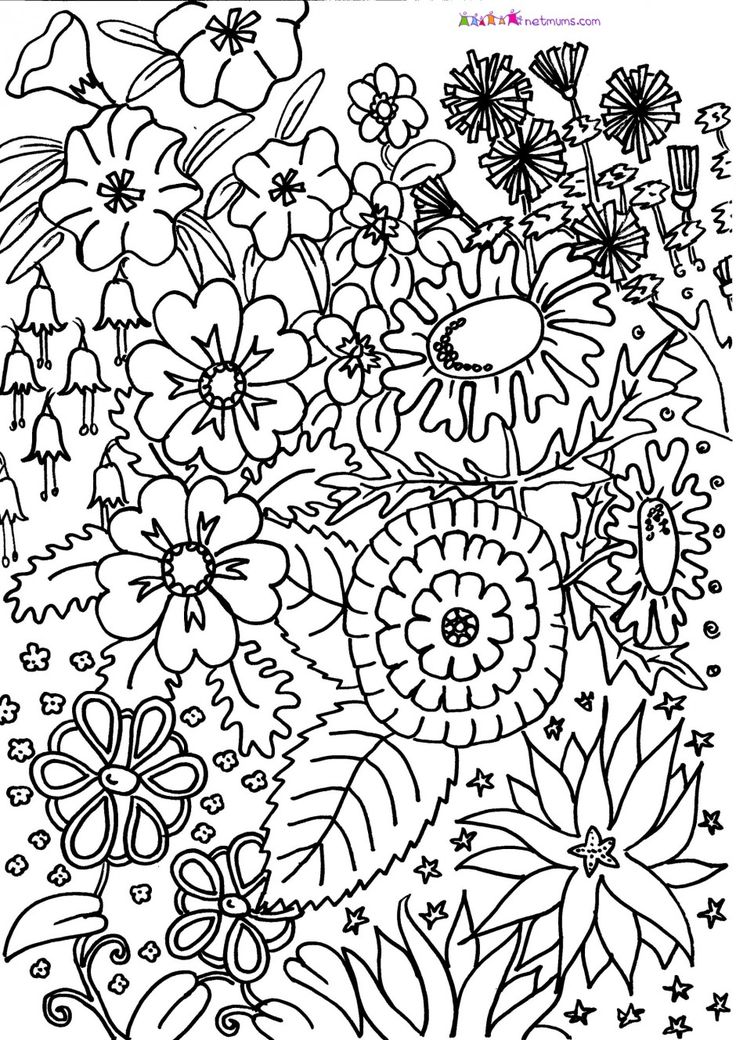 17 best images about adult colouring on pinterest for Coloring pages for adults difficult flower