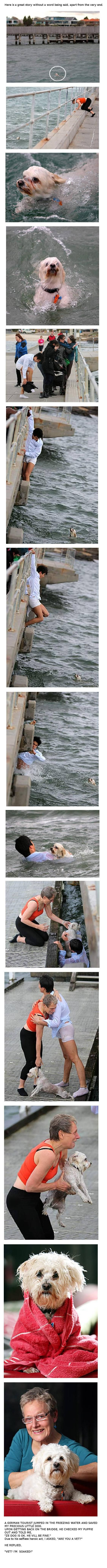 faith in humanity restored, once again