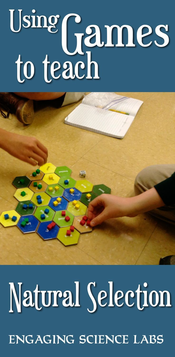 This game allows kids to simulate the rise and fall of populations as different species interact with their environments and each other. Natural selection, population genetics, migration, competition… these can be difficult concepts to study in a classroom but this game makes them captivating. Students can also graph how populations rise and fall. With the included game extension, players explore the potentially catastrophic experience of natural disasters and human interventions.