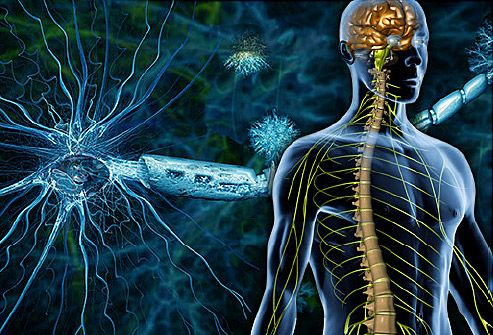 Multiple Sclerosis (MS) Center: Symptoms, Treatments, Diagnosis, Stages, and Causes - from WebMD