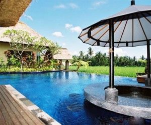 Promo Paket Honeymoon Bali 3 Hari 2 Malam di Ubud  http://balitourasia.com/paket-honeymoon-bali-3-hari-2-malam-di-ubud/