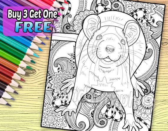 211 best ratties images on pinterest rats pet rats and rodents regal rat adult coloring book page printable instant download fandeluxe Choice Image