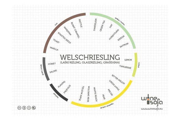 Welschriesling flavor profile