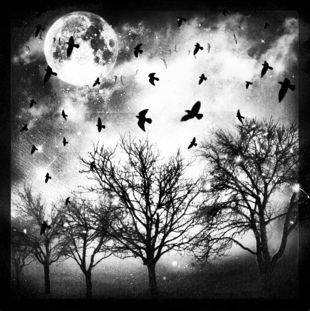 Spooky nights.