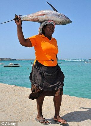 CAPE VERDE! Go for a fishing trip! Catch of the day: Fishing is still alive and well in the island's capital of Sal Rei! #CapeVerde