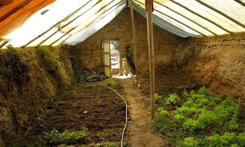 Serre souterraine ou walipini, pour cultiver toute l'année