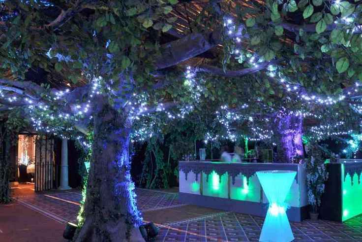 This exactly what I pictured. The blue lights, the tress and leaves and even the bar (still need to check that though)