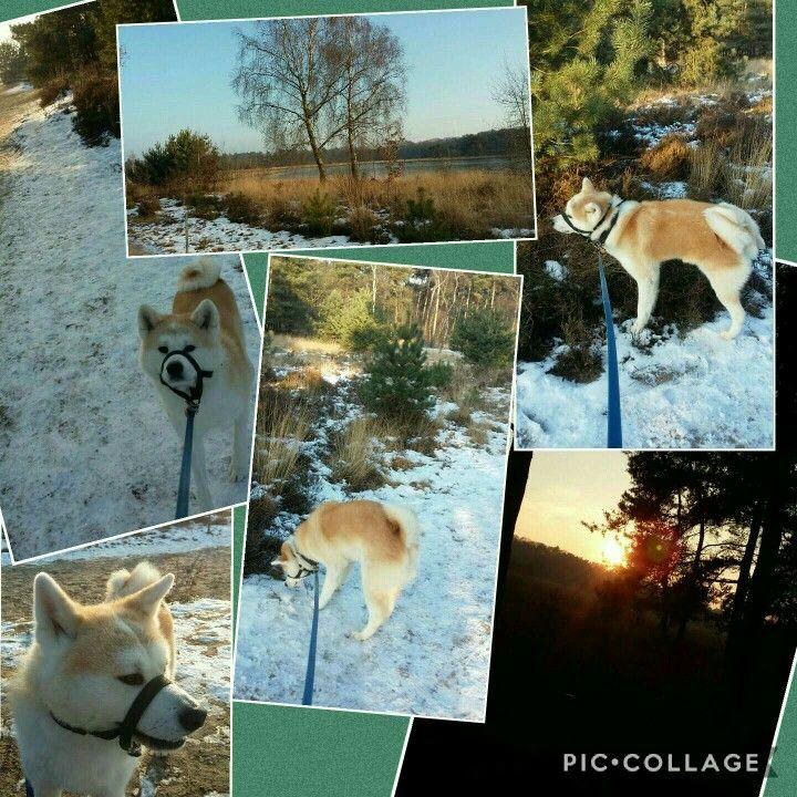 Machiko in de sneeuw