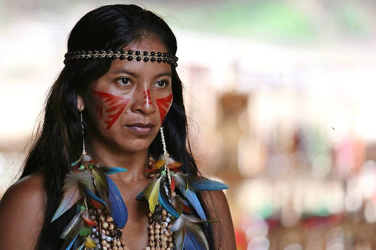 Amazon Wildlife Cruise: Manaus, Brazil | brazilian ...  Amazon Wildlife...